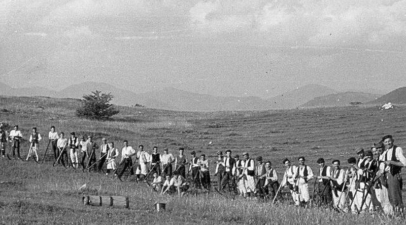 Ramski kosci na Crnom Vrhu 1962.